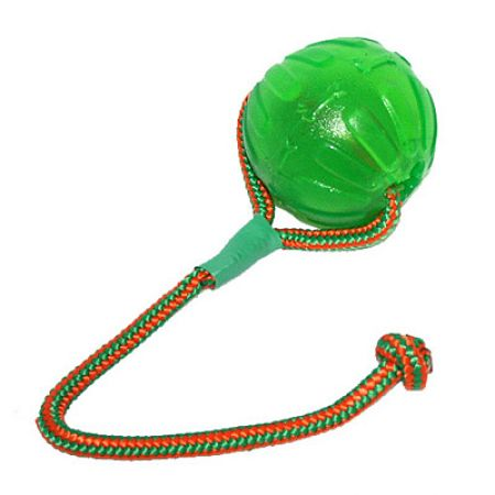 Swing & Fling Chew Ball