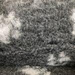 dunkelgrau mit hellgrauen Pfoten