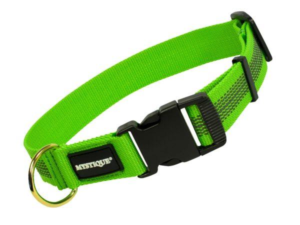 Gummiertes Halsband 30mm Grün