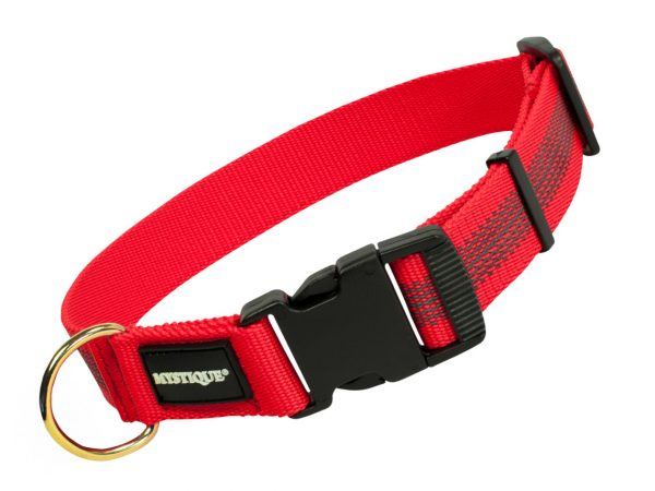 Gummiertes Halsband 30mm Rot